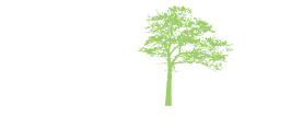 American Environmental Assessment & Solutions, Inc.